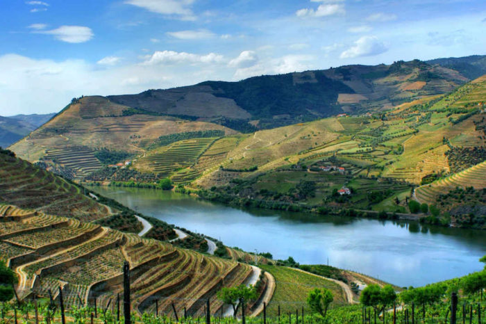 Douro Valley Private Wine Tour